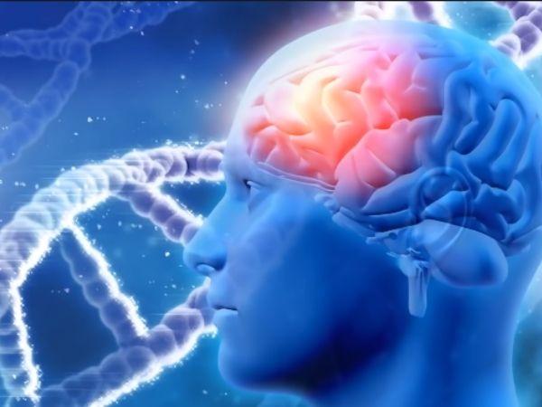 thực phẩm tốt cho trí não